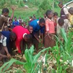 The Water Project: Mwanzo Primary School -  Picking Up Litter