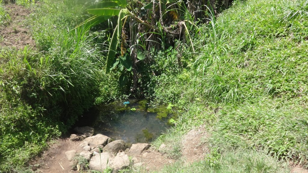 The Water Project : 2-kenya18087-current-water-source