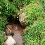The Water Project: Ejinja Community -  Anekha Spring
