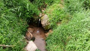 The Water Project:  Anekha Spring