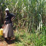 The Water Project: Sharambatsa Community A -  Fetching Water