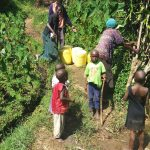 The Water Project: Bukhunyilu Community -  Fetching Water