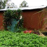 The Water Project: Shiyunzu Community -  Bathing Shelter