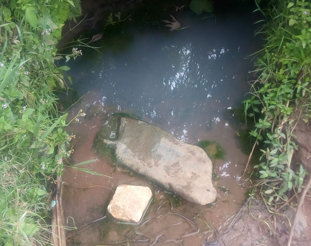 The Water Project : 8-kenya18106-lukoko-spring