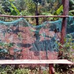 The Water Project: Wasenje Community -  Mosquito Net Garden Fence