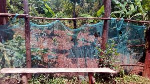 The Water Project:  Mosquito Net Garden Fence