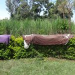 The Water Project: Elukuto Community, Isa Spring -  Clothes Drying