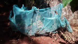 The Water Project:  Mosquito Net Being Used As Fencing