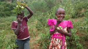 The Water Project:  Children Eating Guavas