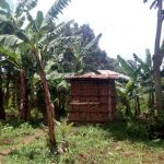 The Water Project: Wasenje Community, Margaret Jumba Spring -  Latrine Through Banana Farm