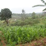 The Water Project: Chandolo Community, Joseph Ingara Spring -  Community Landscape