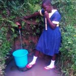 The Water Project: Mwituwa Community, Nanjira Spring -  Fetching Water