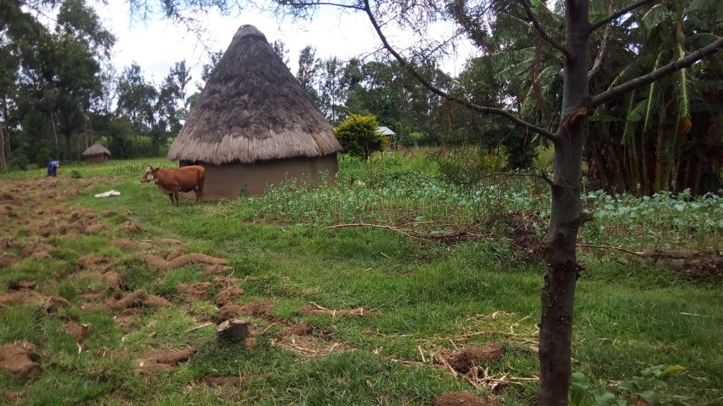 The Water Project : 1-kenya18121-household