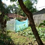 The Water Project: Masera Community -  Mosquito Nets Being Used As Fences