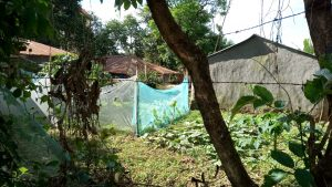 The Water Project:  Mosquito Nets Being Used As Fences