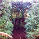 The Water Project: Lwangele Community -  Bathing Shelter