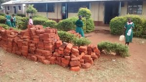 The Water Project:  Bricks