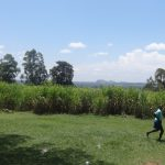 The Water Project: Musabale Primary School -  Surrounding Environment