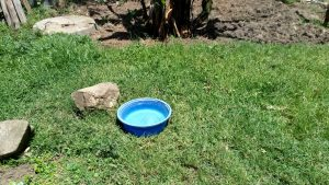 The Water Project:  Water