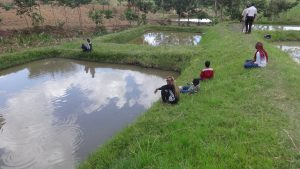 The Water Project:  Fish Farm