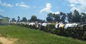 The Water Project:  Hanging Clothes On Flower Beds