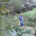 The Water Project: Musutsu Community -  Woman Brings Jerrycan To Spring