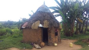 The Water Project:  A Grass Thatched House Common In The Community