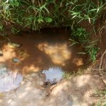 The Water Project: Mungaha B Community, Maria Spring -  Maria Spring Water Source
