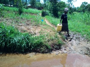 The Water Project:  A Lady Heading To The Spring