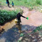 The Water Project: Chegulo Community, Yeni Spring -  Preparing To Collect Water