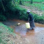 The Water Project: Chegulo Community, Yeni Spring -  Trudging Into Water Source For Collection
