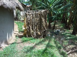 The Water Project:  A Bathroom Made Of Banana Leaaves