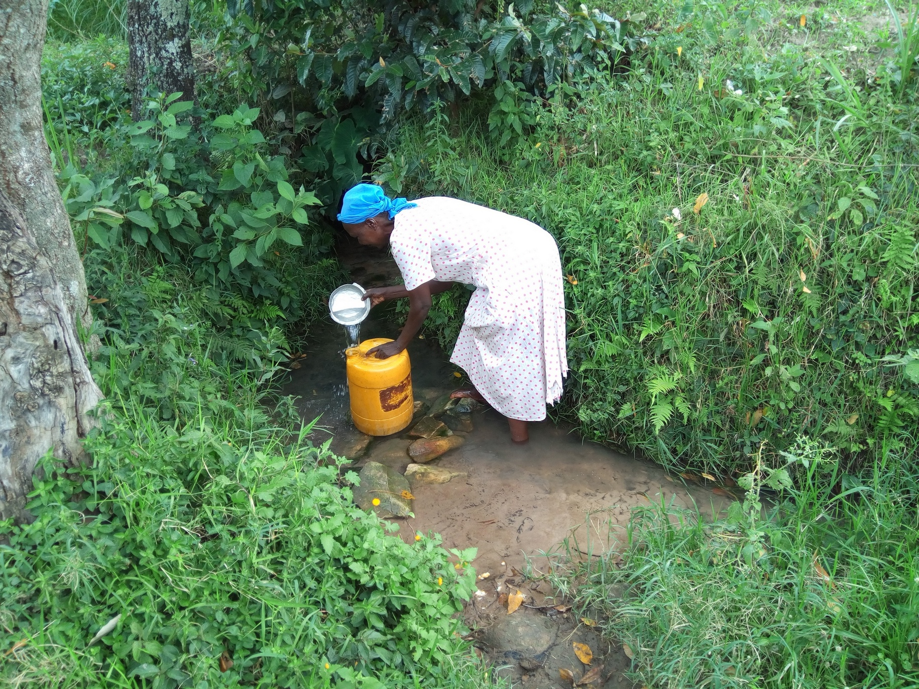 The Water Project : kenya18143-fetching-water-at-the-spring