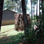 The Water Project: Chegulo Community, Werabunuka Spring -  Latrine Made Of Banana Leaves