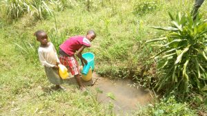 The Water Project:  Children From The Community Fetching Water At Anuka Unprotected Spring