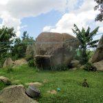 The Water Project: Shirugu Community, Mashela Spring -  Homestead