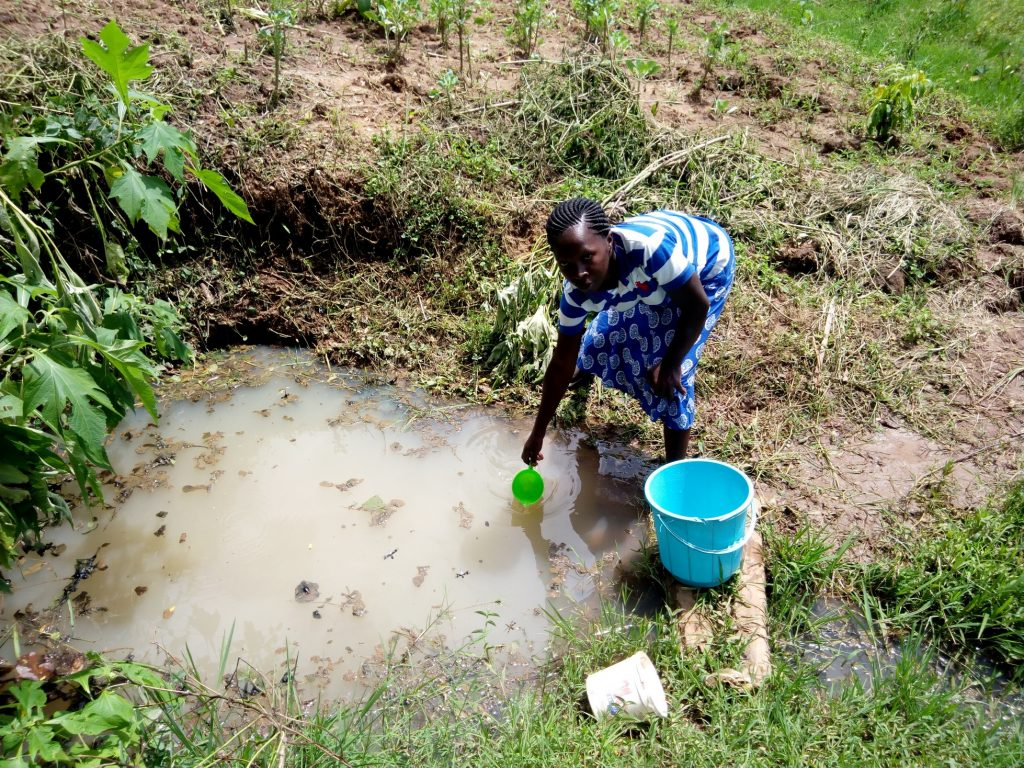 The Water Project : kenya18155-scooping-water