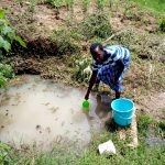 The Water Project: Ematetie Community, Chibusia Spring -  Scooping Water