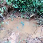 The Water Project: Asimuli Community, John Omusembi Spring -  Unprotected Water Source Of Akunwa