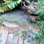 The Water Project: Koitabut Community, Henry Kichwen Spring -  Henry Kichwen Water Source