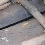 The Water Project: Chepnonochi Community -  Cases Of Open Defecation In Latrine Floors