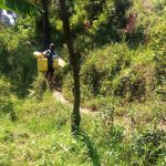 The Water Project: Masera Community, Murumba Spring -  Child Carries Jerrycans Down To Water Source