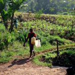 The Water Project: Irumbi Community A -  A Community Member Heading To The Spring