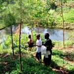 The Water Project: Irumbi Community A -  Gardens And Standing Water