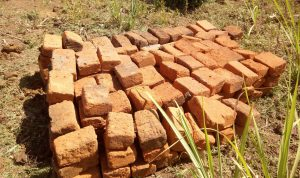 The Water Project:  Bricks Gathered For Construction