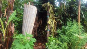 The Water Project:  A Bathroom In The Middle Of Banana Plantation Covered With Twigs And Banana Leaves