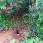 The Water Project: Emulakha Community, Alukoye Spring -  A Hole In The Ground Used As A Latrine