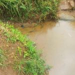The Water Project: Emulakha Community, Alukoye Spring -  Alukoye Unprotected Water Source