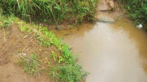 The Water Project:  Alukoye Unprotected Water Source