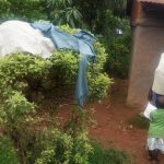 The Water Project: Emulakha Community -  Clothes Dry On Bush